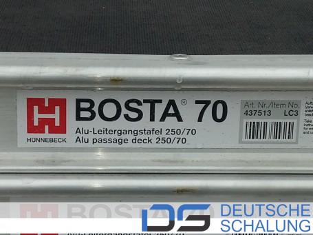 Alu-Leitergangstafel 250/70